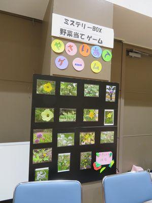野菜の花当てクイズ