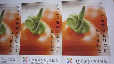 ジュニア野菜ソムリエ