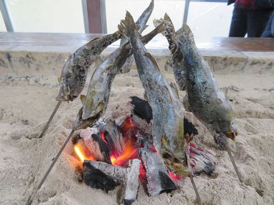 マスの炭火焼き