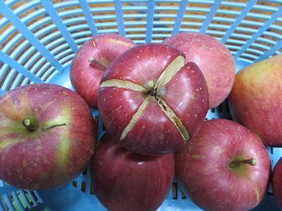 割れたりんご