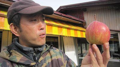 変なりんご