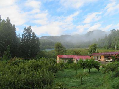 朝のりんご畑